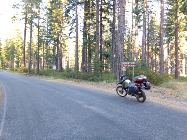 Motorcycle parked by forest service sign and tall trees